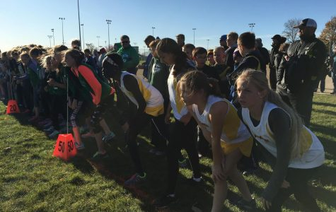 Cross country focuses on community, not competition