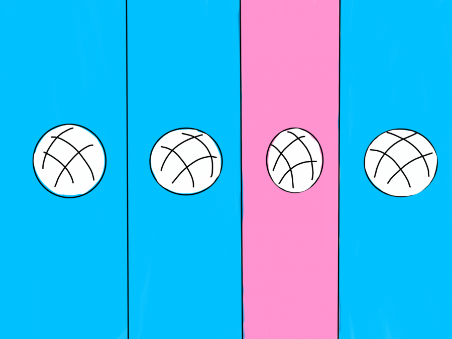 Girls should be accepted on boys' sports teams
