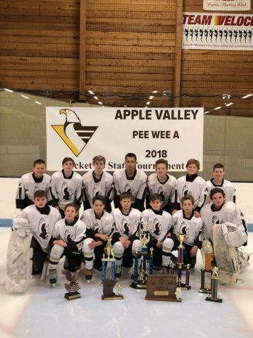 Picture from Apple Valley Youth Hockey website