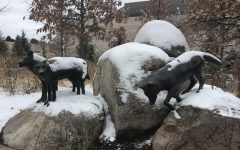 The MN Zoo provides year-round fun