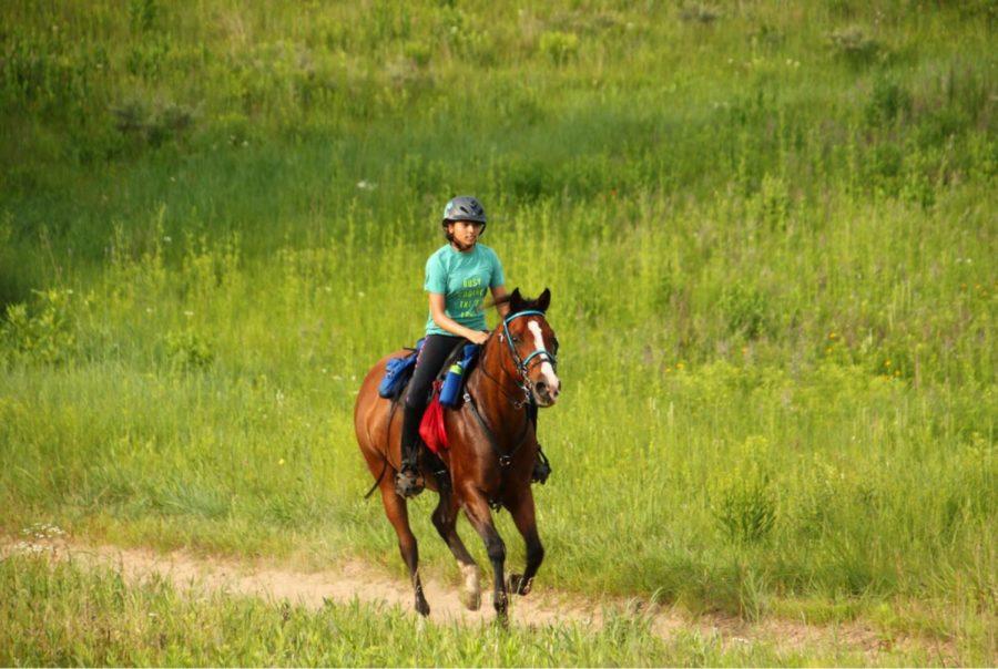 Equestrian+life