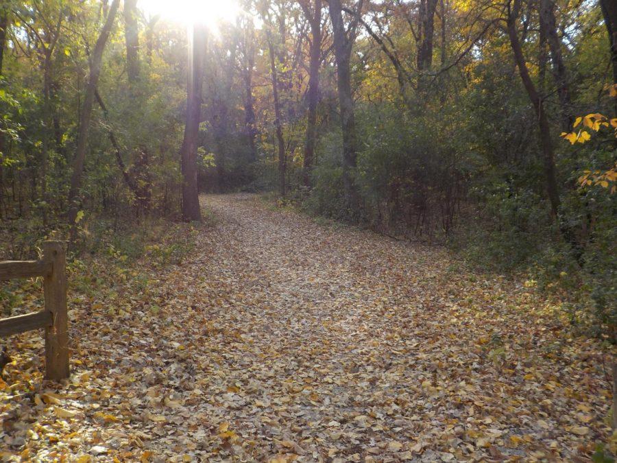 Review: Alimagnet Nature Park
