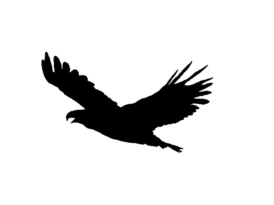 Eagle's Call logo contest!