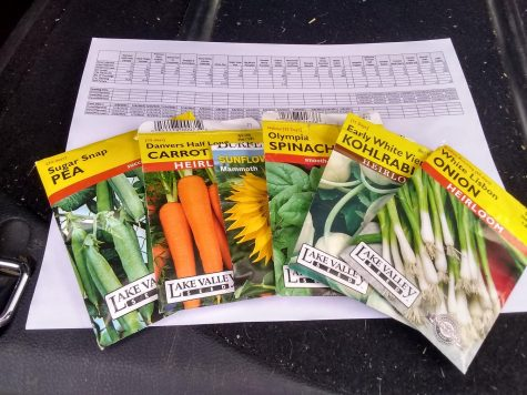 3 Steps to a Better Garden